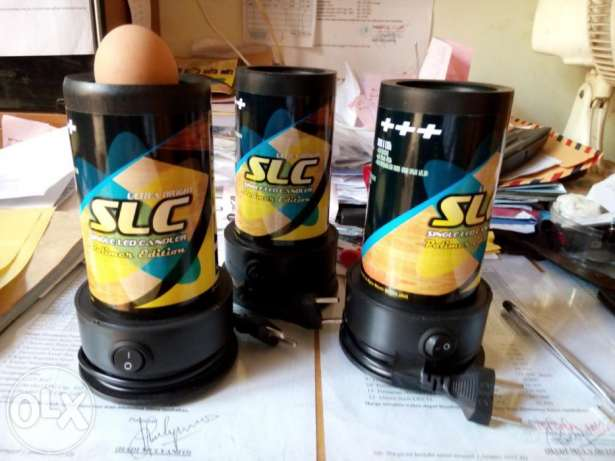 teropong telur
