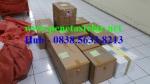 Harga Mesin Penetas telur di Jakarta Selatan - 0838.5633.8213
